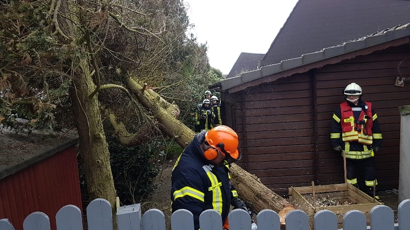 Technische Hilfeleistung - Sturmschaden